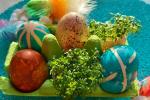 Řeřicha a gumičková vejce